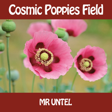 Cosmic-Poppies-Field220